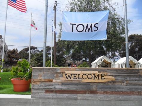 toms-ofisi